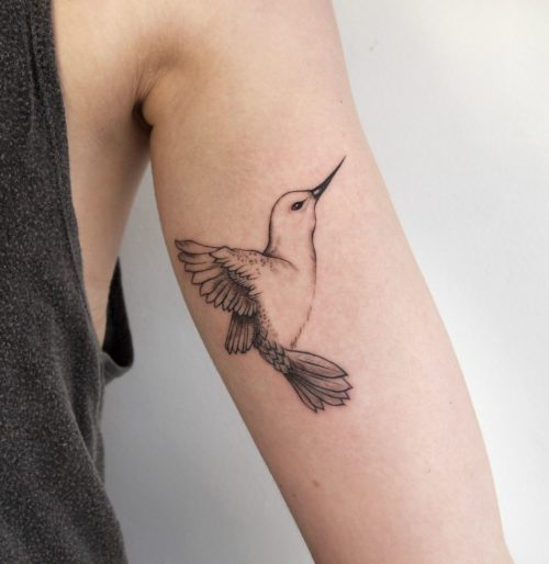 Tatuajes Colibri Blanco Y Negro Tatuajes