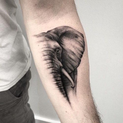 TatuajeElefante4 500x500 Tatuajes de elefantes y su significado